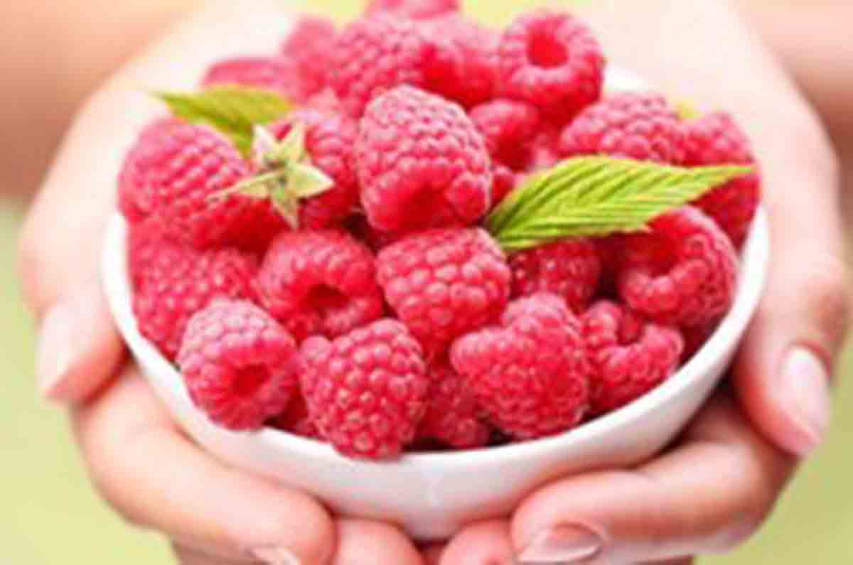 Raspberry ketones found in red raspberries