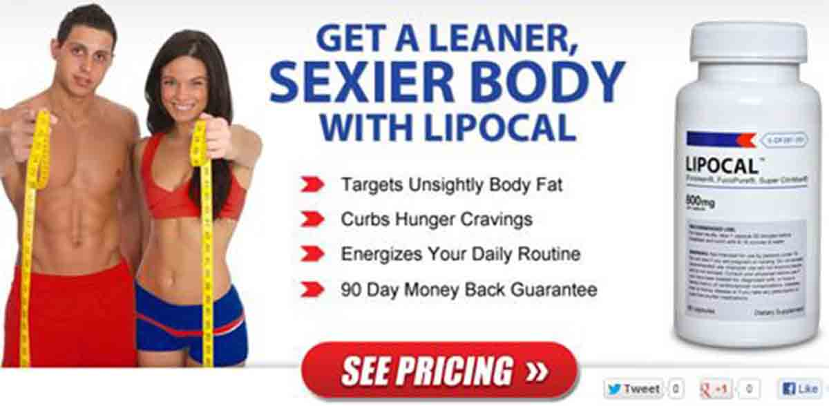 LipoCal Web