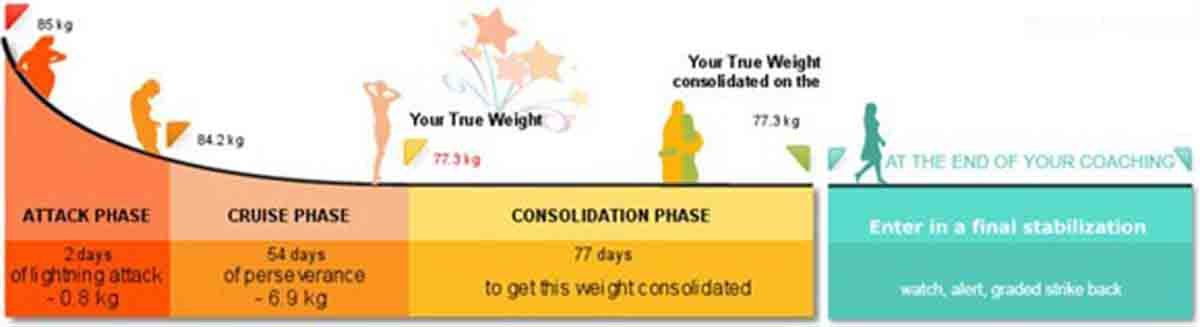 Dukan Diet 4 phases