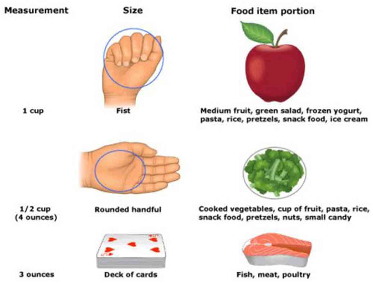 Hand measure portion sizes