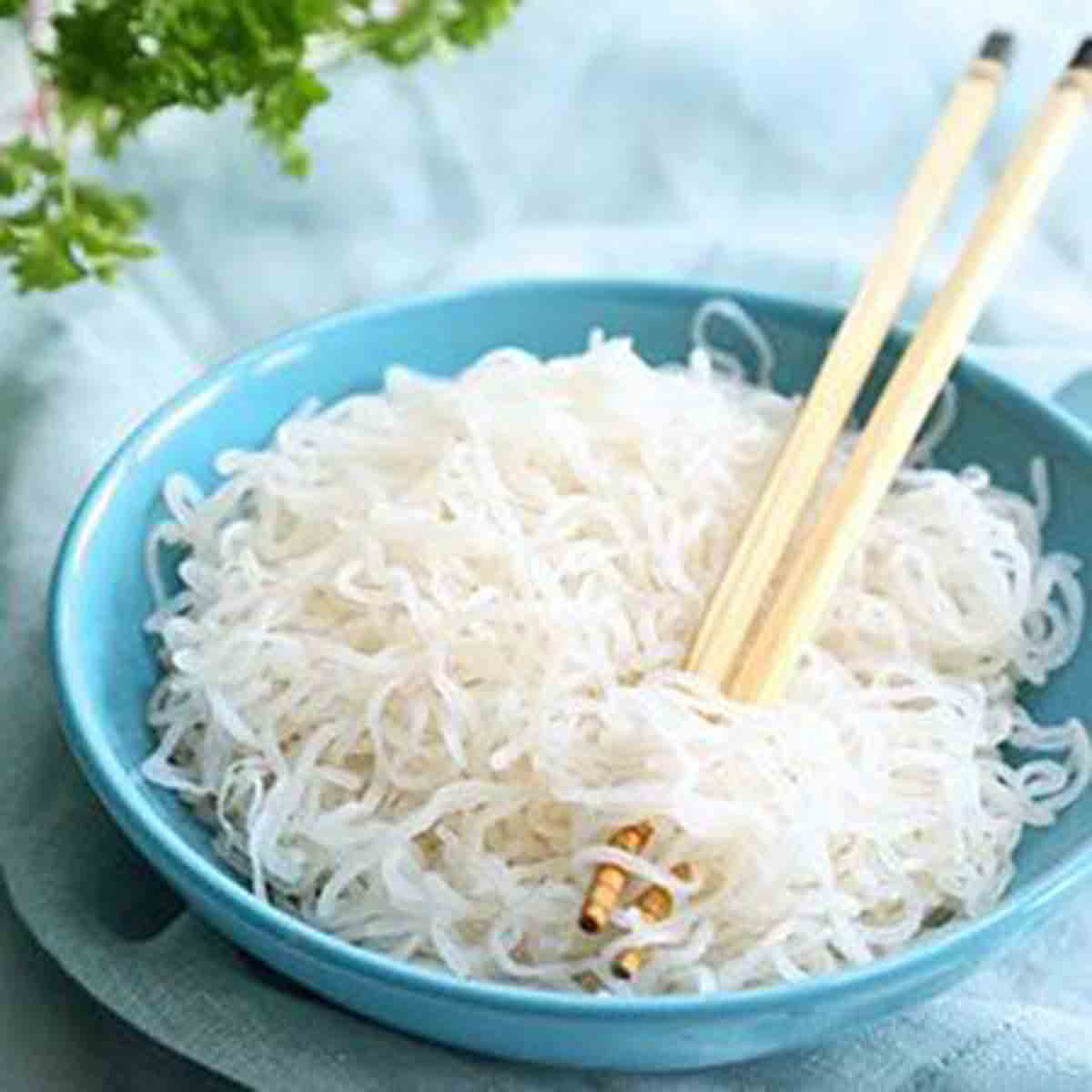 7 Ways Glucomannan Helps You To Lose Weight - Shirataki Noodles