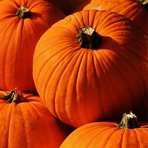 Health Benefits of Pumpkin Immunity Booster